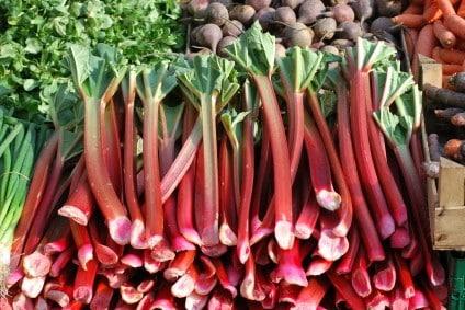 fresh rhubarb at a market