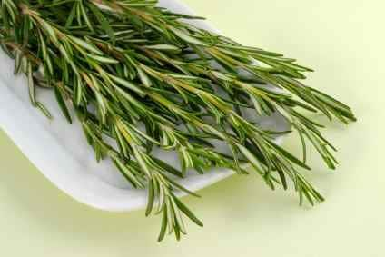 rosemary on a plate