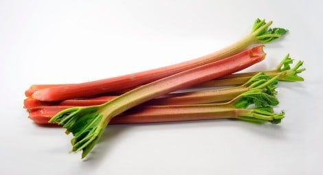 fresh rhubarb perfect for recipes