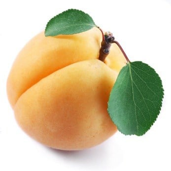 Apricots for strudel