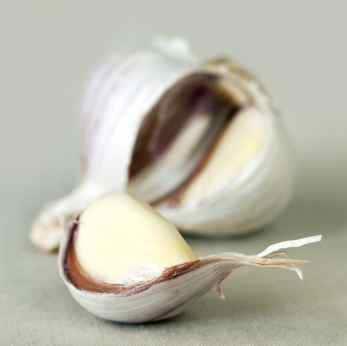 fresh clove of garlic