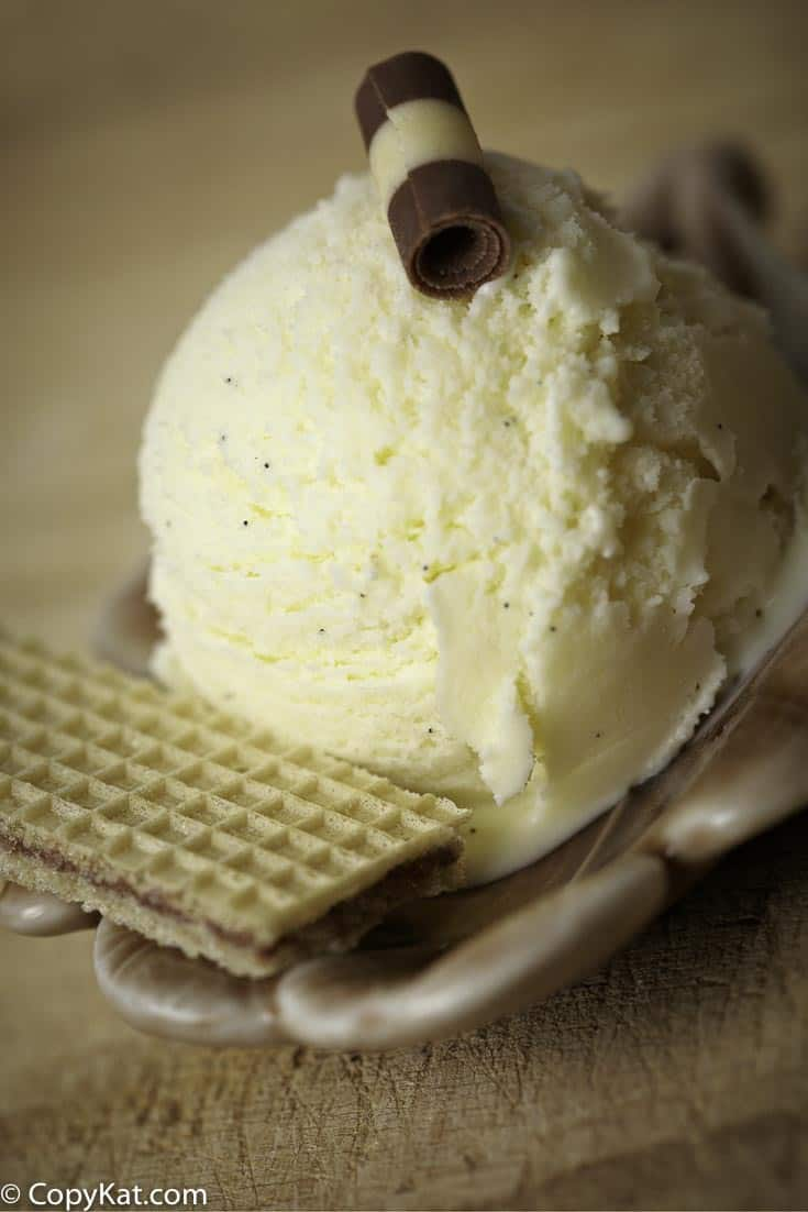 Make easy to prepare No Churn Vanilla Bean Ice Cream.