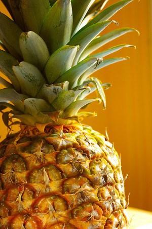 keno pineapple pudding