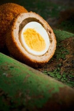 scottish Egg