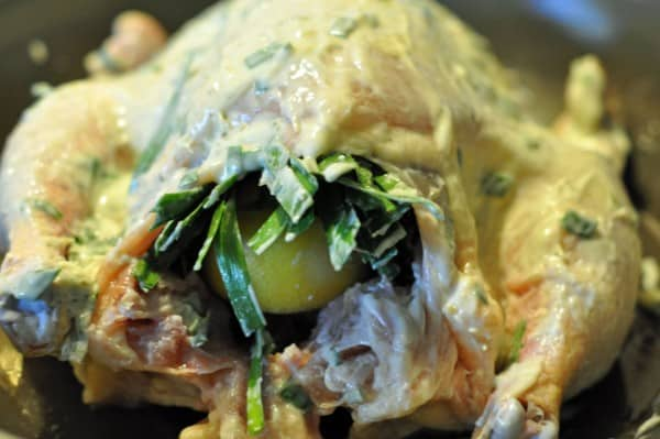 preparing a baked chicken with herbed butter