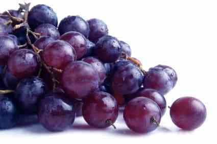 grapes go in 24 hour fruit salad