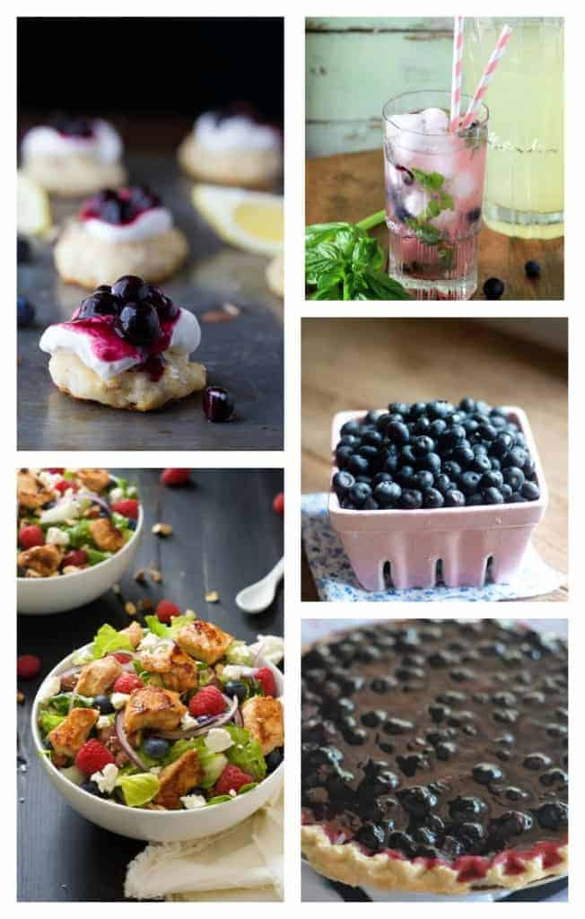Blueberry Recipes you must try